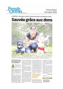 2015_01 - Presse Océan